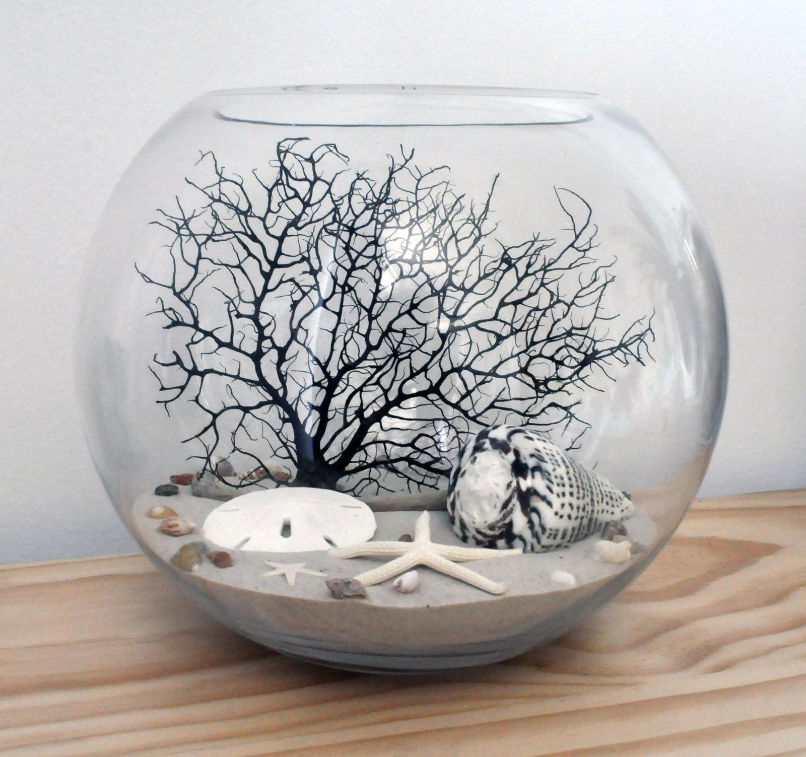 Coastal Glass Fishbowl Terrarium SEA FAN Starfish Shells