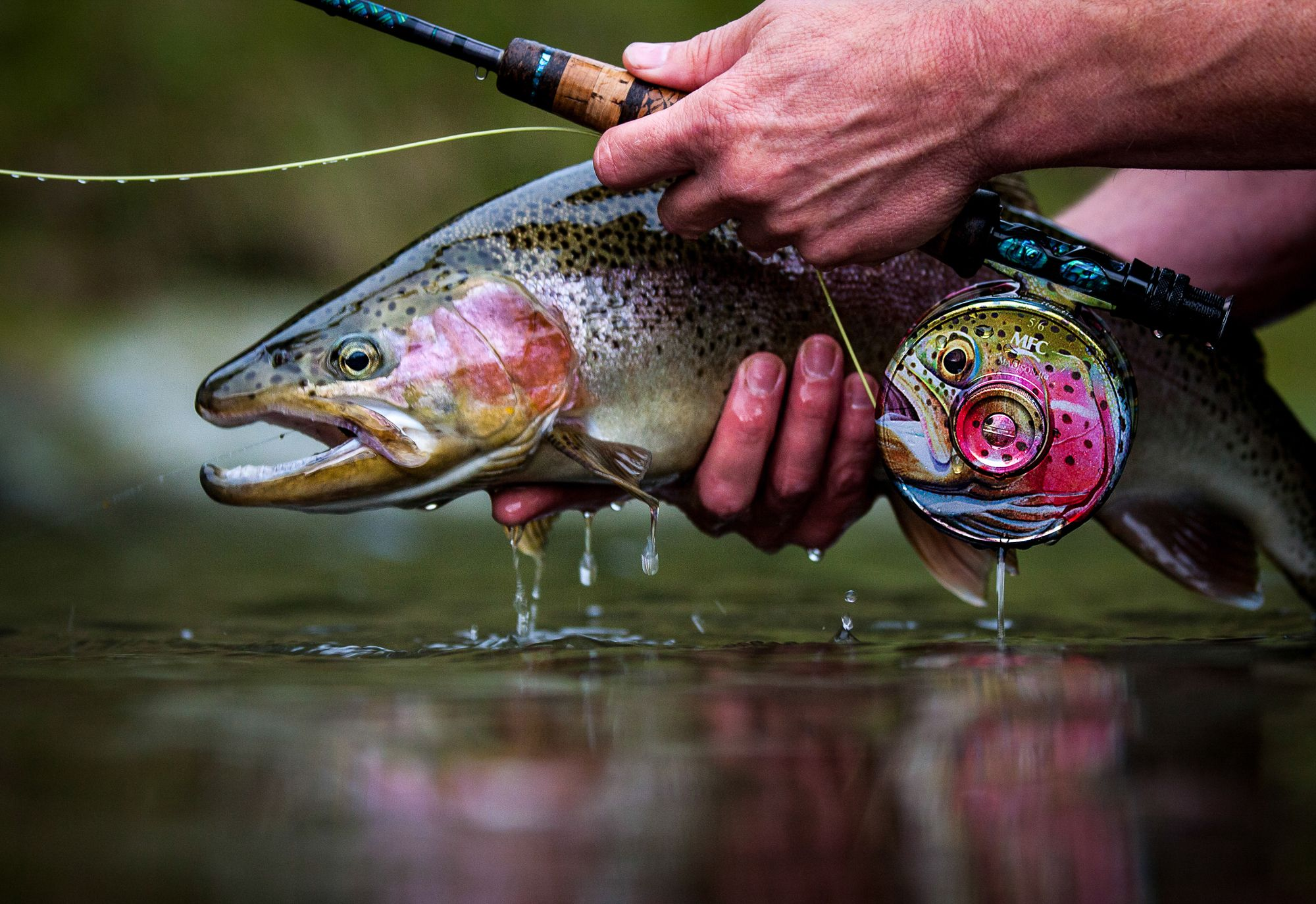 2013 thomas thomas fly fishing photo contest the for Hatch fly fishing
