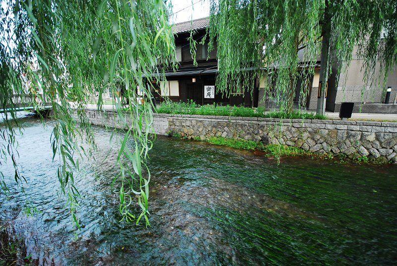 Shirakawa area, KYOTO