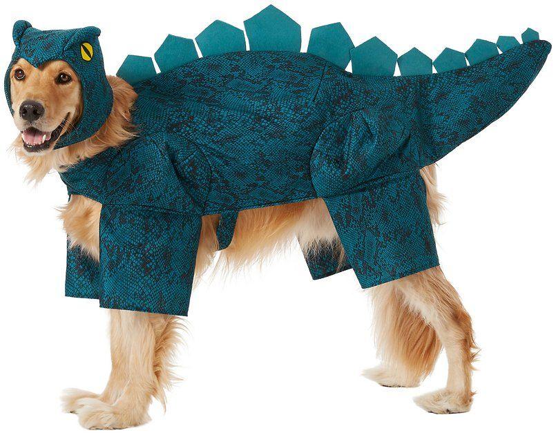 Pin By Alexandra Zapata On Halloween Dog Dinosaur Costume Dog
