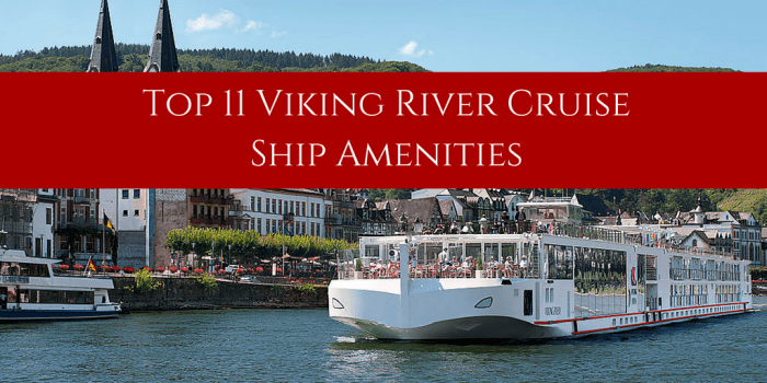 Top 11 Viking River Cruise Ship Amenities | Viking cruises ...