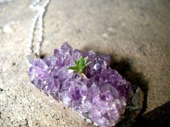 Live Plant Necklace Tillandsia Amethyst Quartz by ... Quartz Crystal Scp