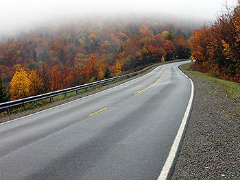 scenic road flower essay Use our scenic drive finder and road trip planner to easily create custom road trips unlimited stops, edit, share, find recommended places of interest, hotels and campgrounds, manage budgets, print or export directions and more.