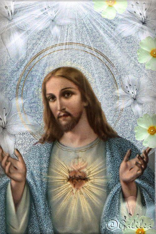 BLOG CATÓLICO DE ORACIONES Y DEVOCIONES CATÓLICAS: IMAGENES DEL SAGRADO CORAZÓN DE JESÚS