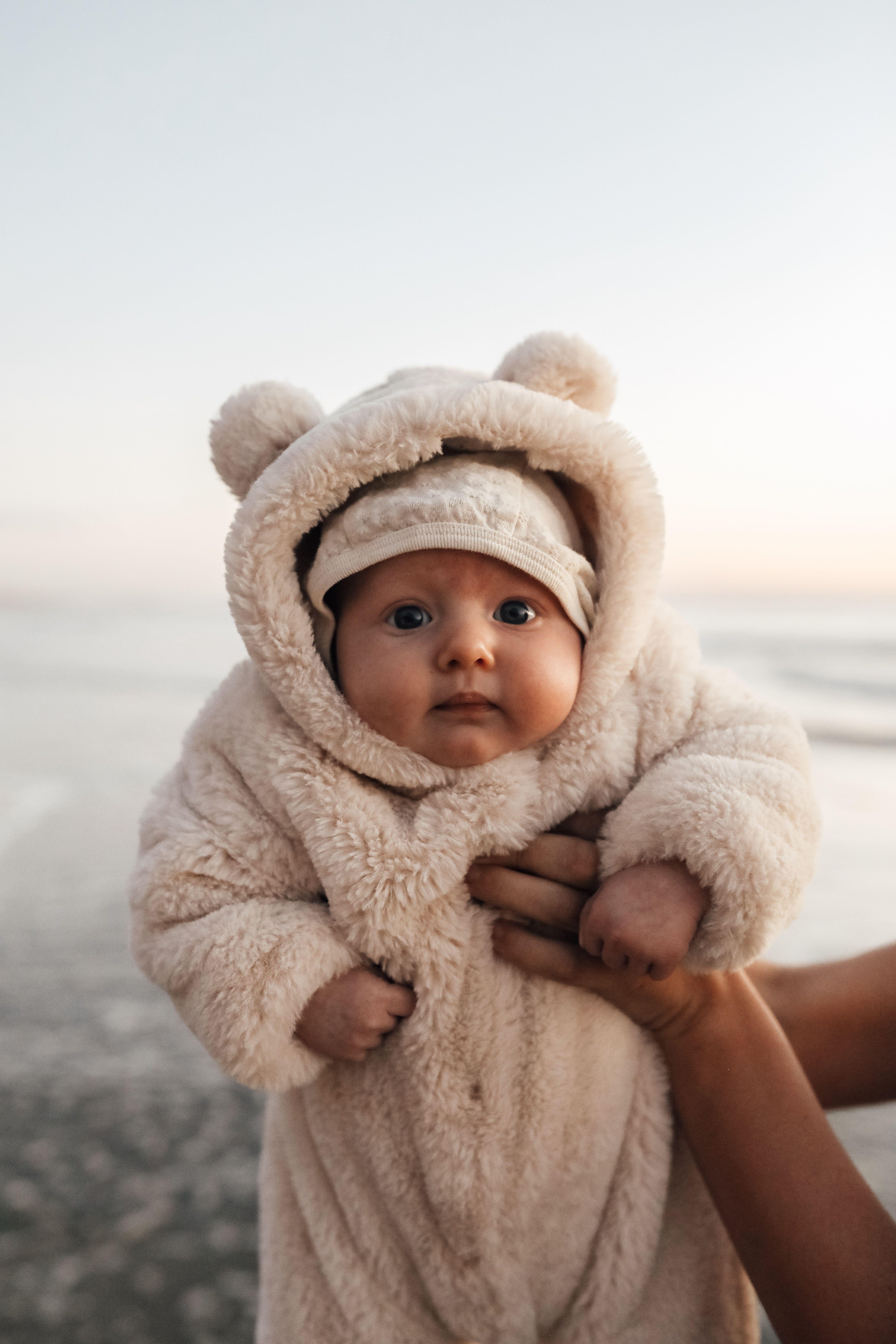 Baby bear  #bears