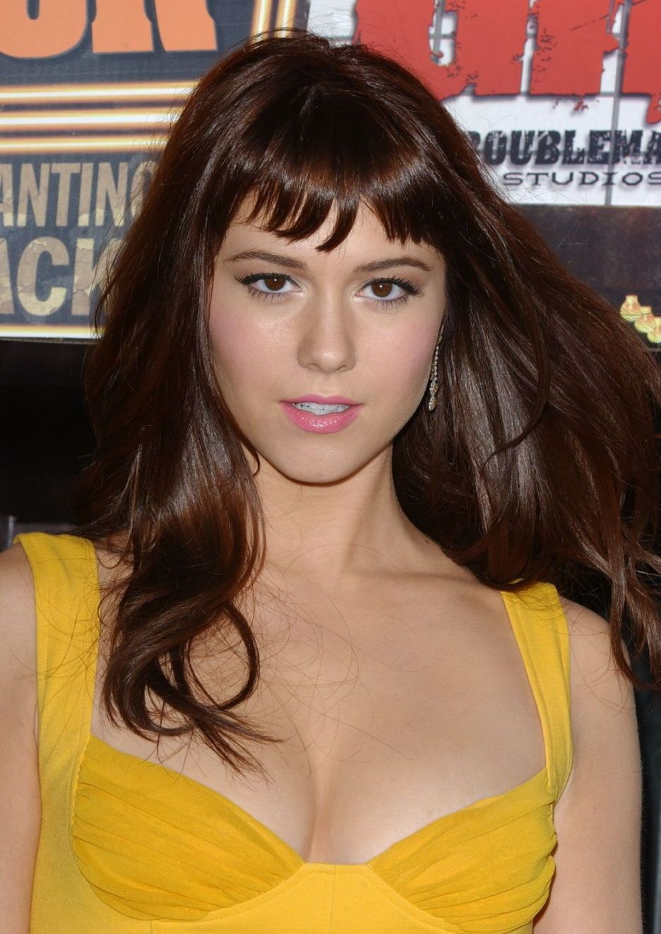 mary elizabeth winstead 2011