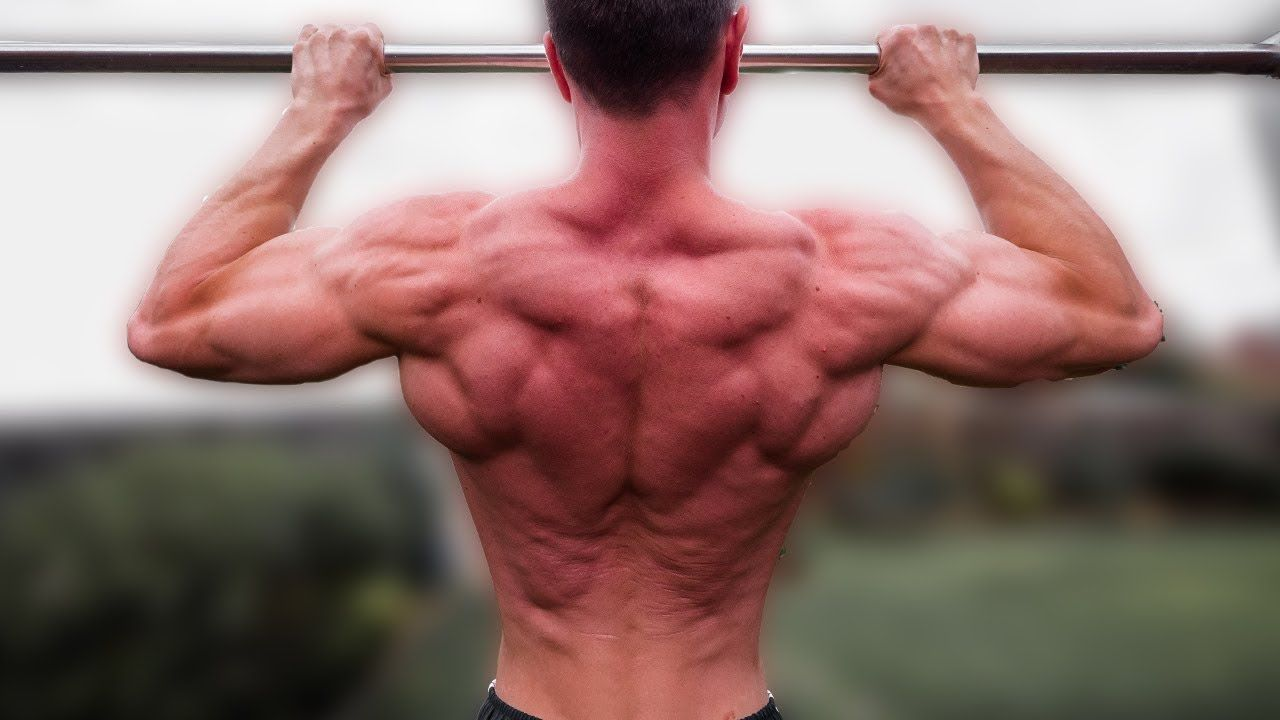 The Best Exercise To Increase Pullups Calisthenics Training Pull Ups Exercise