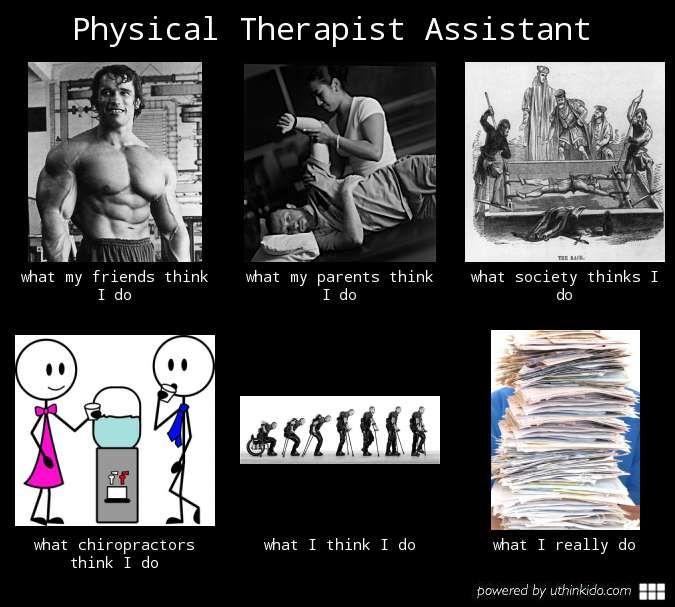 Physical Therapist Assistant Meme Physical Therapist Assistant