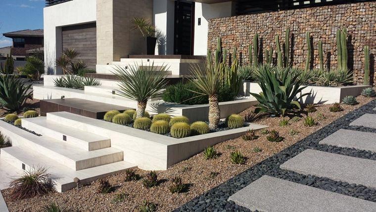 Risultati immagini per giardino collina terrazzamenti   plants ...
