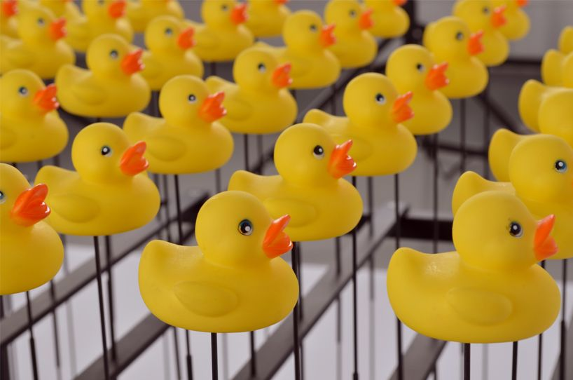 david cranmer of nervous squirrel reveals the duck machine