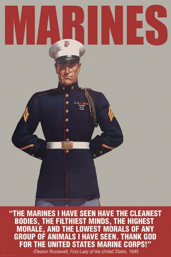Eleanor Roosevelt Quotes Marines   Marines Group Of Animals Eleanor Roosevelt Quotes And Such