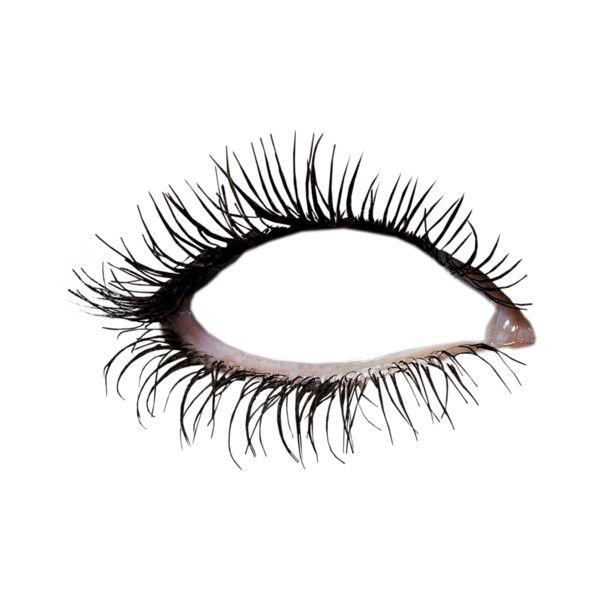 12 Png Makeup Clipart Eye Makeup Doll Parts