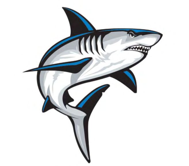 Shark Logo Google Search ฉลาม ศ ลปะ ป ศาจ
