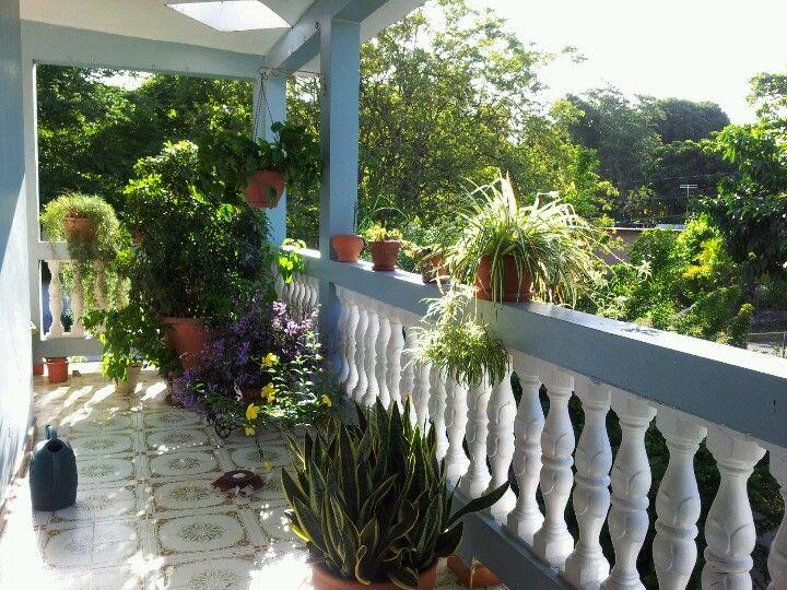 Plantas De Terraza Con Mucho Sol. Beautiful Latest Ideas Para ...