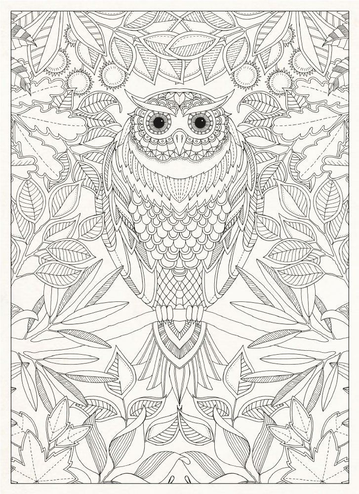 Hoot Hoot Goes The Owl In The Secret Garden Owl Coloring Pages Coloring Books Coloring Pages For Grown Ups