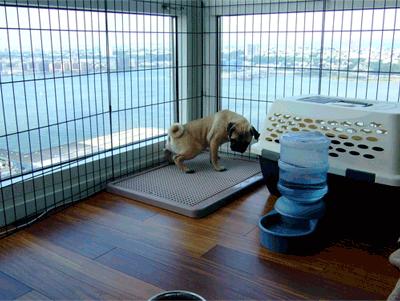 Ugodog Dog Litter Box Toilet Indoor Dog Potty Pee Pee Pad Indoor Dog Potty Dog Potty Training Dog Litter Box