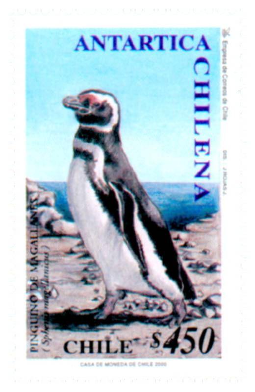 Antartica Chilena Chilean Antarctic Antartida Tematica Sellos De Chile Sellos Sellos Postales Estampilla Postal