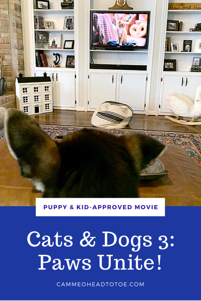 Puppy Kid Approved Movie Cats Dogs 3 Paws Unite Cammeo Head To Toe In 2020 Dog Cat Puppies Cats