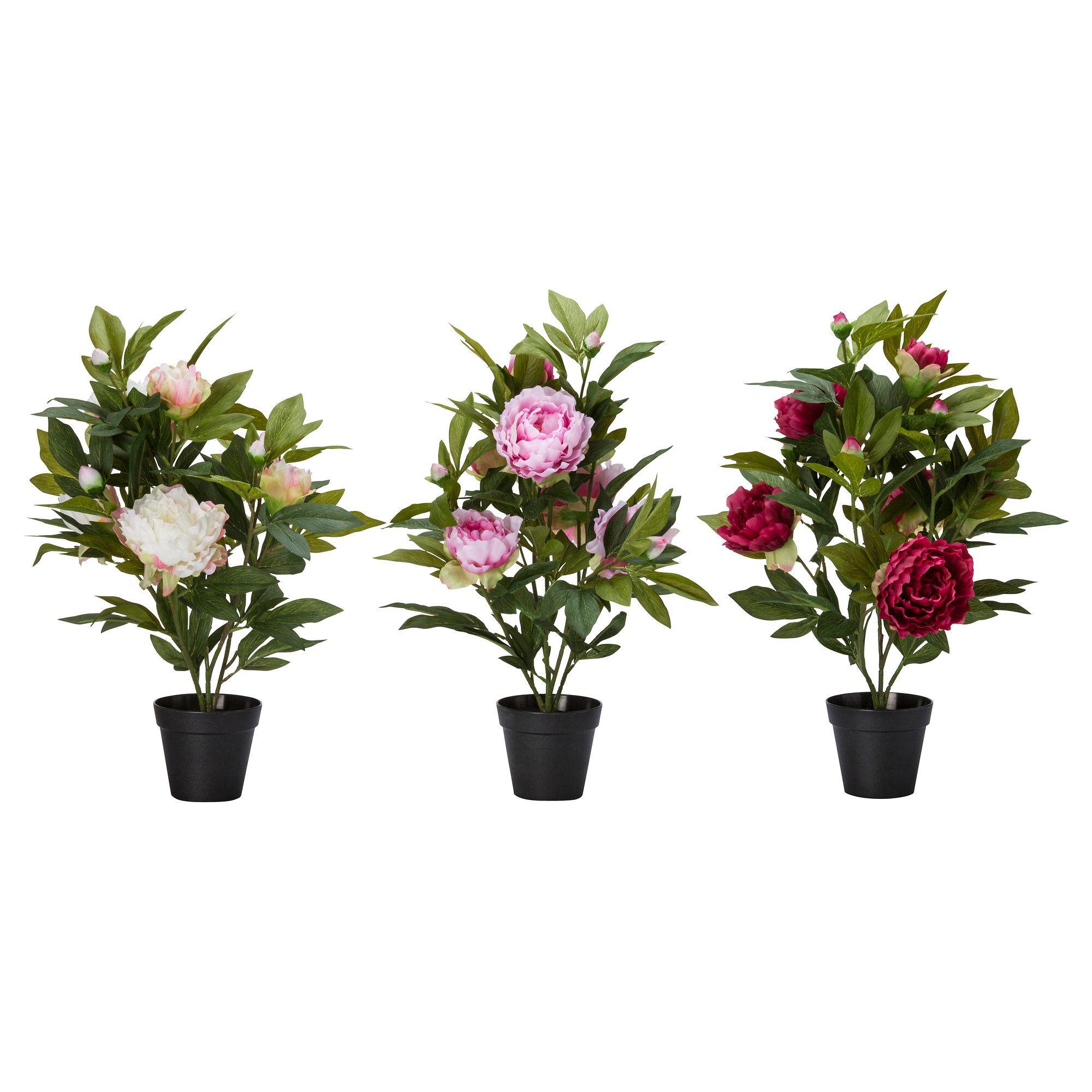 Свадебный, оби купить цветы