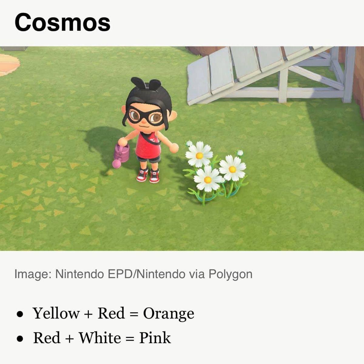 Acnh Flower Hybrid Guide In 2020 Animal Crossing Game Animal Crossing Qr Animal Crossing