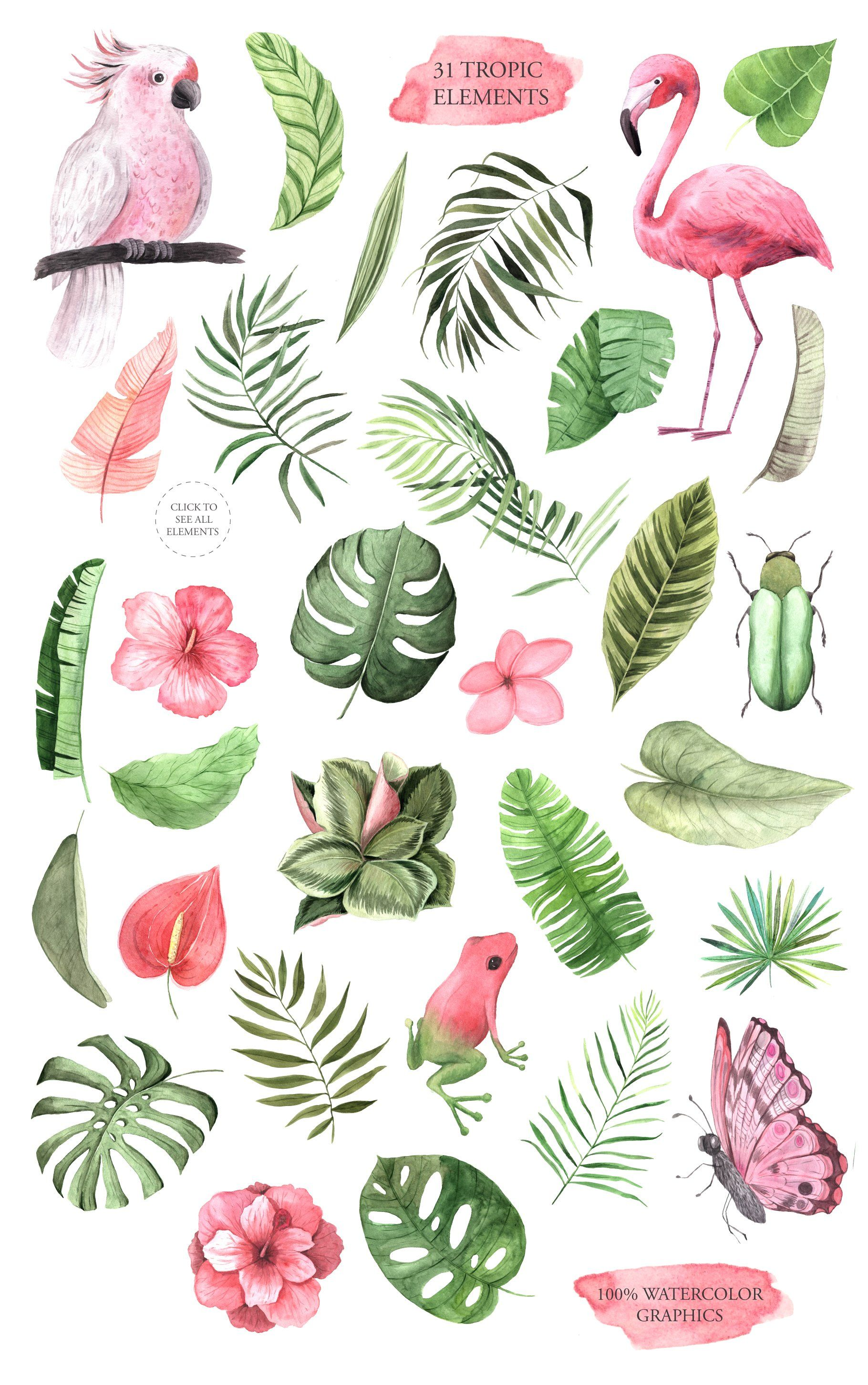 Pin On Drawing Illustration Learn how to draw tropical leaf pictures using these outlines or print just for coloring. pinterest