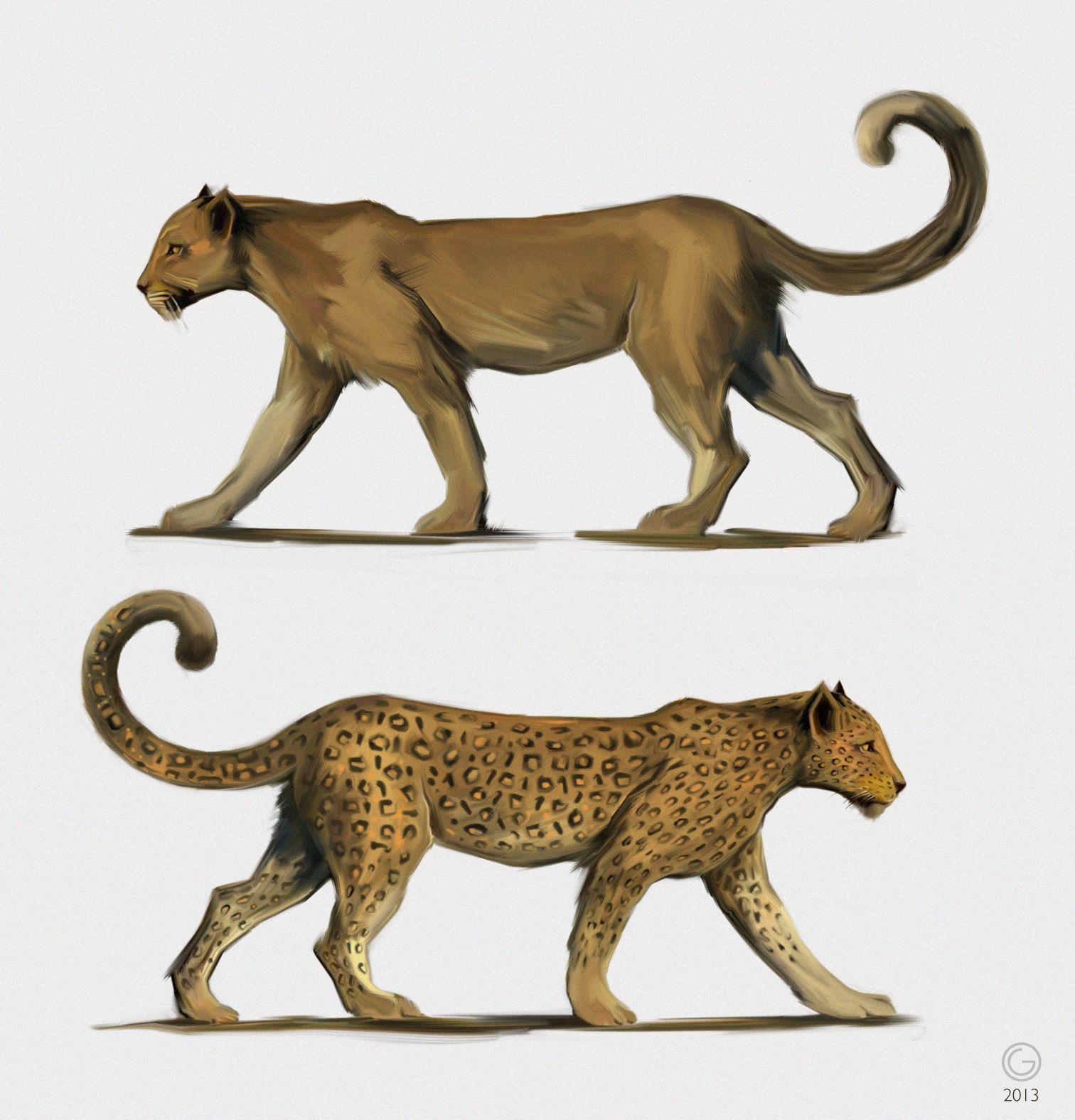 Pantherae