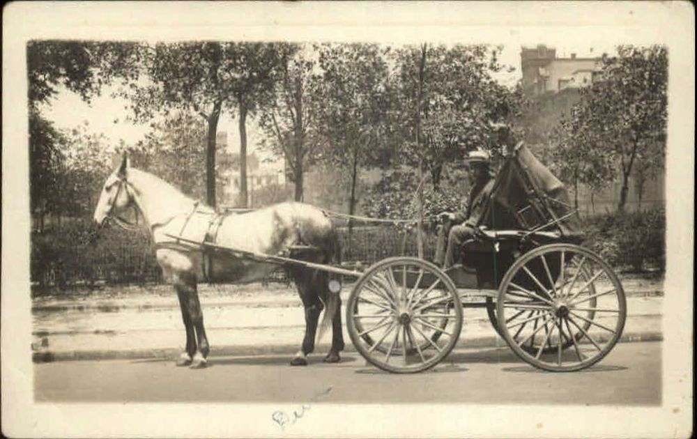 Fancy Horse Cab Carriage c1915 Real Photo Postcard