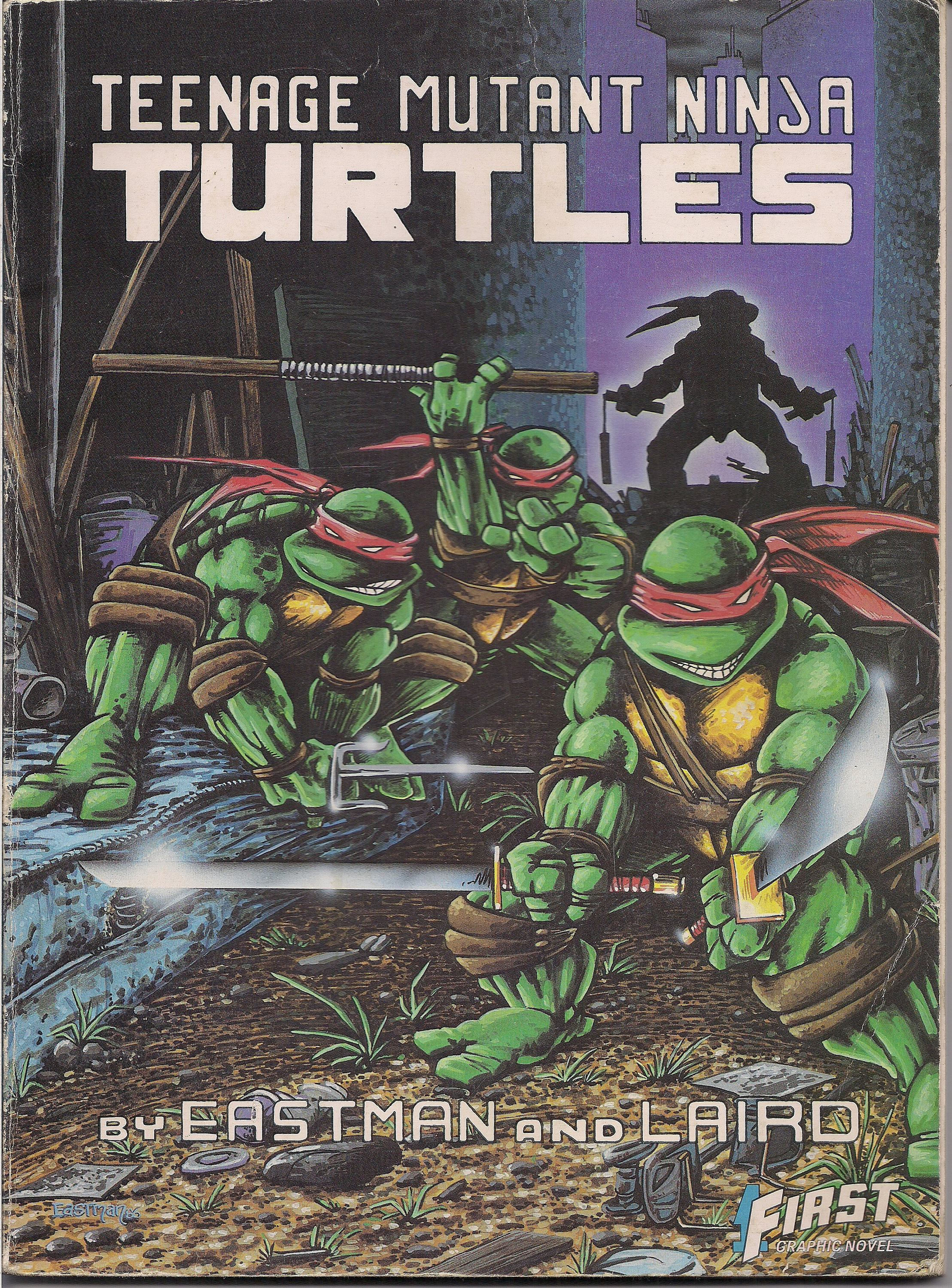 Teenage Mutant Ninja Turtles Original Vintage Poster  Pin Up Comic Books 1989