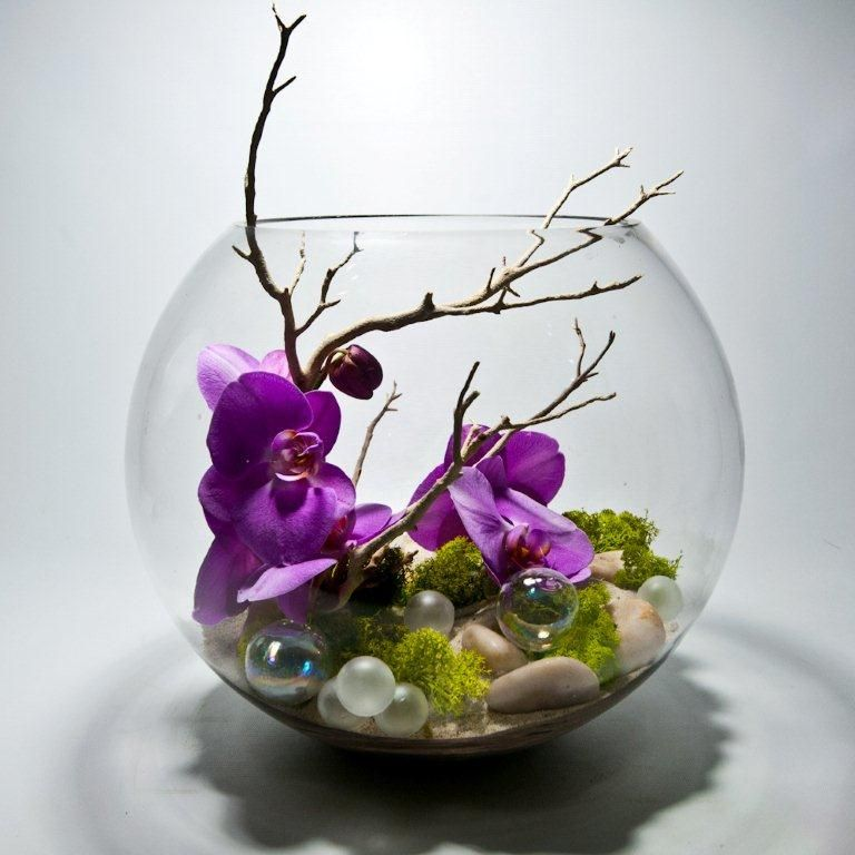 Contemporary Orchid Bowl Fresh Flowers Arrangements Orchid Flower Arrangements Holiday Floral Arrangements