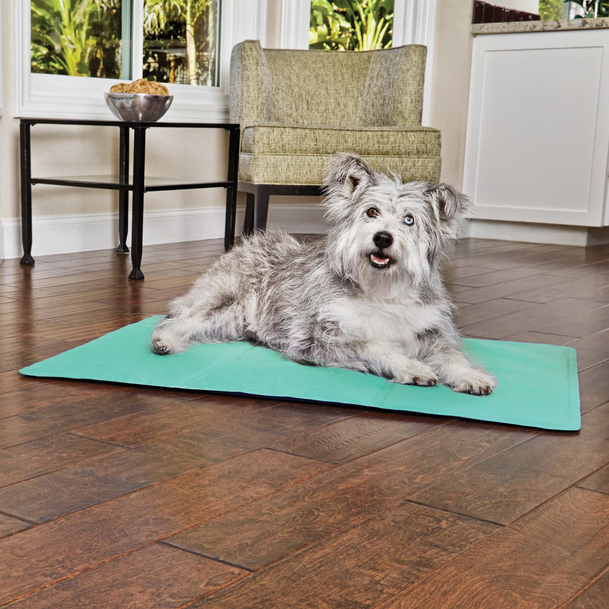 Help Your Pup Chill Out With The Good2go Cooling Gel Dog Mat This Refreshing Travel Dog Mat Keeps Your Canine Cool Without Need Dog Mat Dog Blanket Puppy Beds