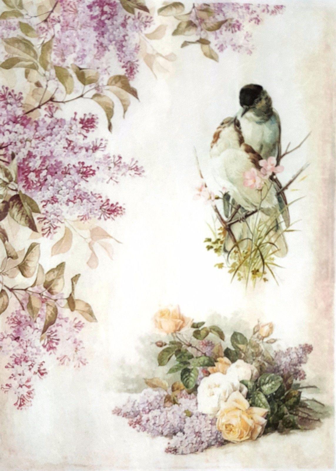Decoupage Sheets Lovely Birds  1 Rice Decoupage Paper Scrapbooking