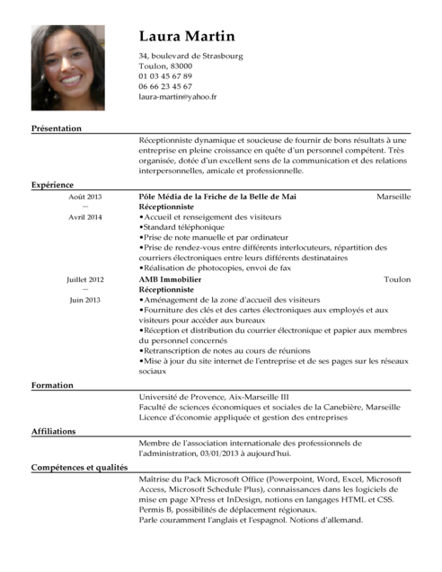 Resume En Francais Example