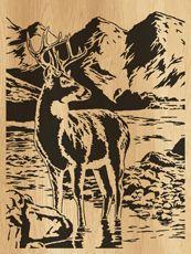 028-deer