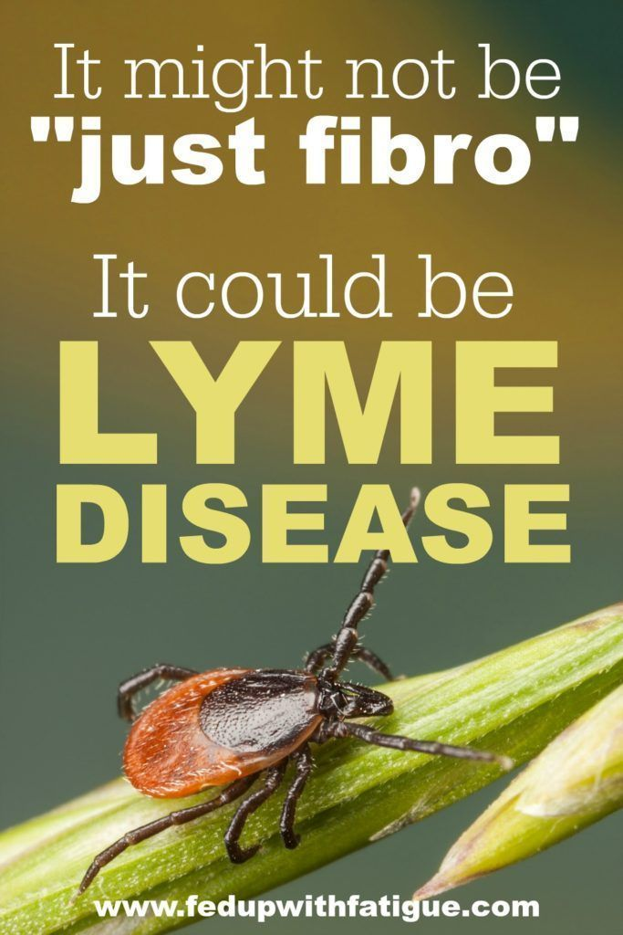 Last month, I was diagnosed with chronic Lyme disease. My doctor says my fibromyalgia symptoms may actually be caused by Lyme. I wanted to share my story because I'm sure there are many others in the fibro community who have undiagnosed Lyme. Sometimes it