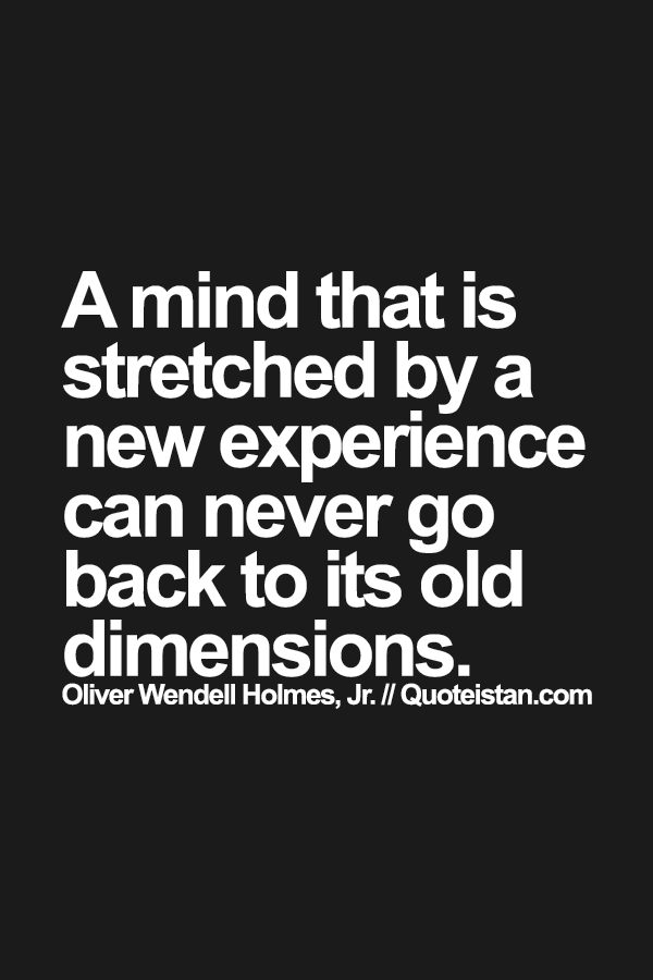 a mind that is stretched by a new experience can never go back