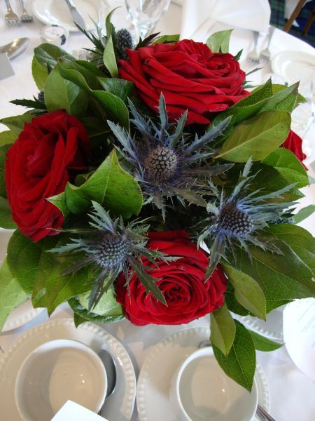 Roses and thistle Heres your red, blue and green Wedding color