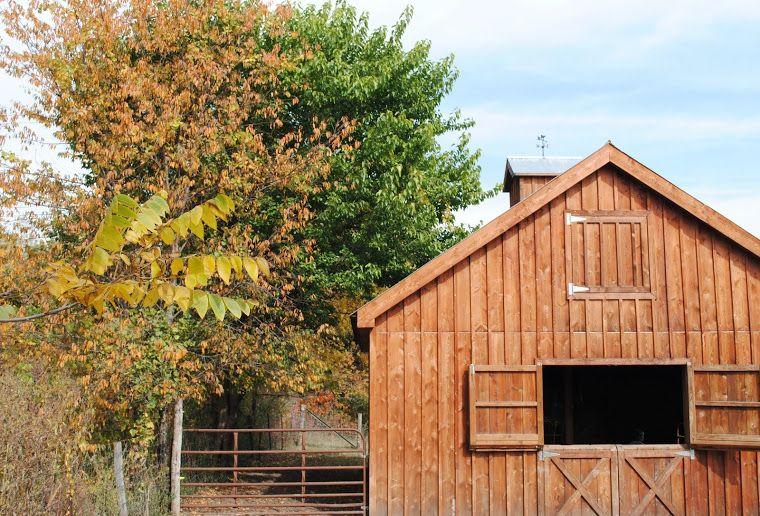 ~Irishman Acres~: My Farm Tour