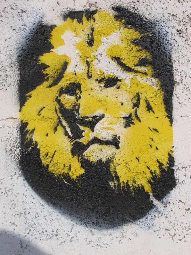 Lion Stencil Art