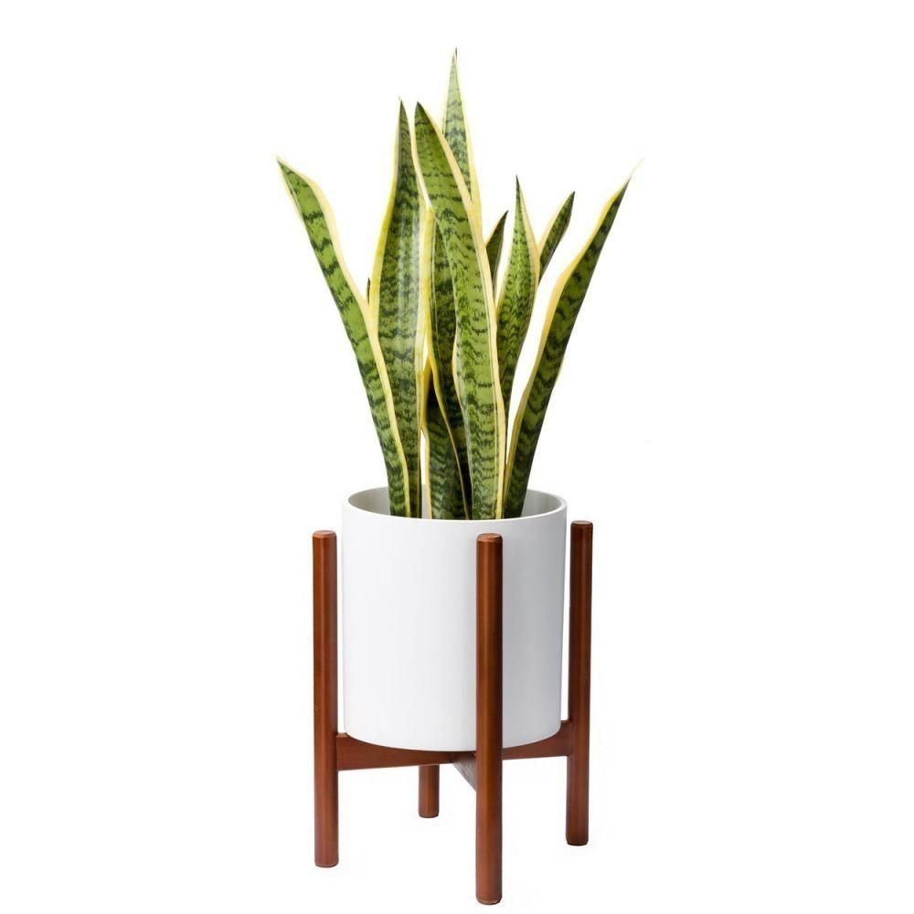Wooden Home Accessories Plants Wooden Plant Stand No Pot Plant Pot Holder Wooden Plant Stands Flower Pot Holder Plant Pot Holders