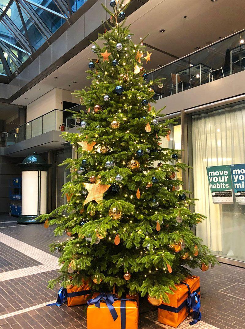 Weihnachtsbaum Service.Weihnachtsbaum Blau Orange Und Gold Für Axel Springer In Berlin