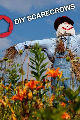 A step-by-step guide on how to make a scarecrow to protect your plants, or liven up your garden this fall.