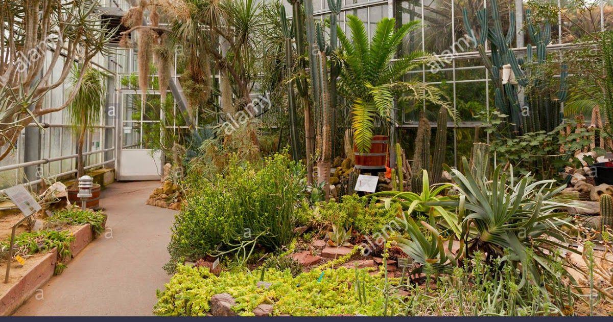 Garden Center Poynton With Images Garden Garden Center