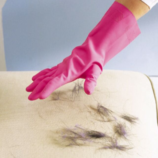 Put on a damp rubber dishwashing glove and run your hand over hair-covered upholstery—the hair will cling to the glove, not the sofa. Rinse off the glove in the sink (with the drain catcher in place, of course).