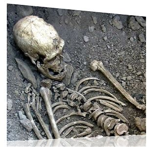 Nephilim Skeletal Discoveries When Where Discovery Of