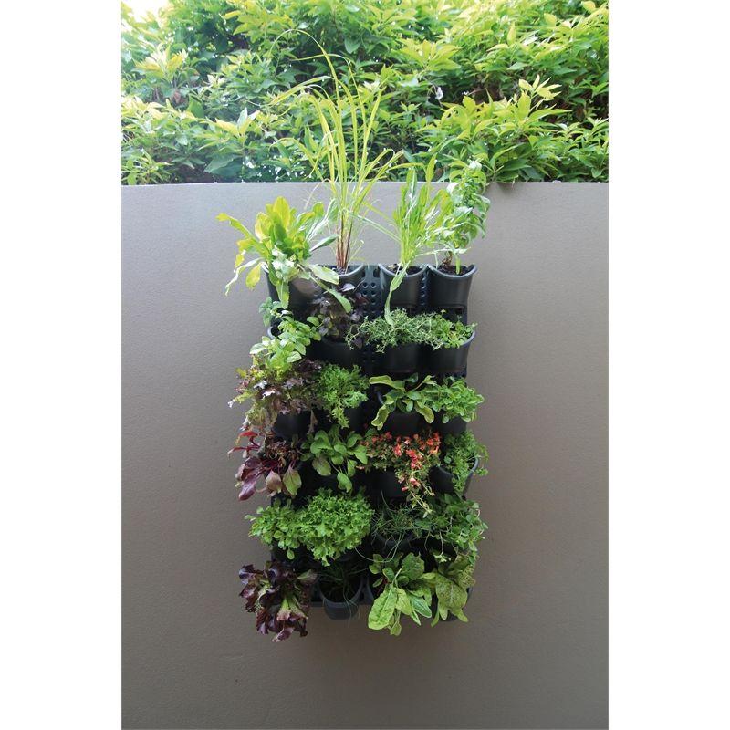Holman GreenWall Vertical Garden Kit   Gardens, Garden ideas and ...