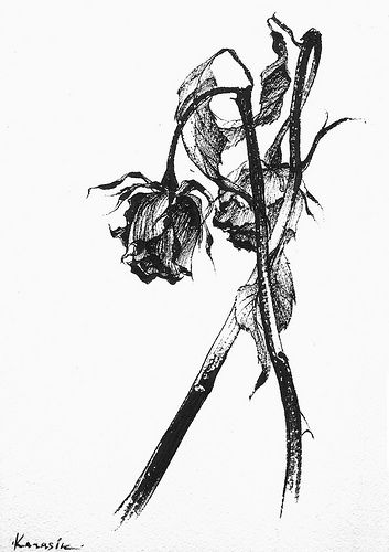 Free Dead Flowers Png, Download Free Clip Art, Free Clip Art on Clipart  Library
