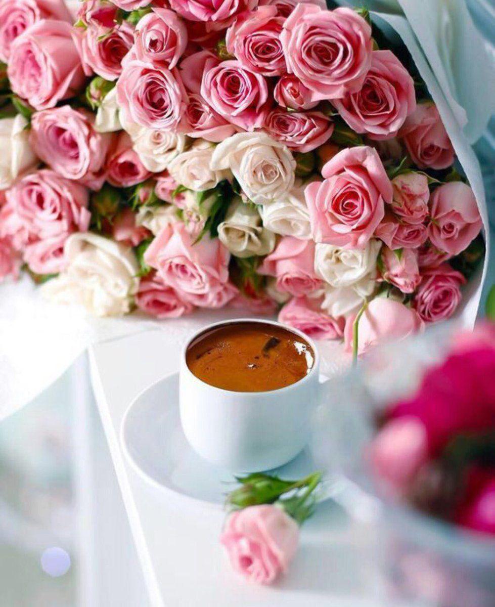 أنت لا تحتاج إلى البحث عن السعادة فهي ستأتيك حينما تكون قد هي أت موقع إقامتها في قلبك مساء الخير Coffee Flower Good Morning Coffee Turkish Coffee