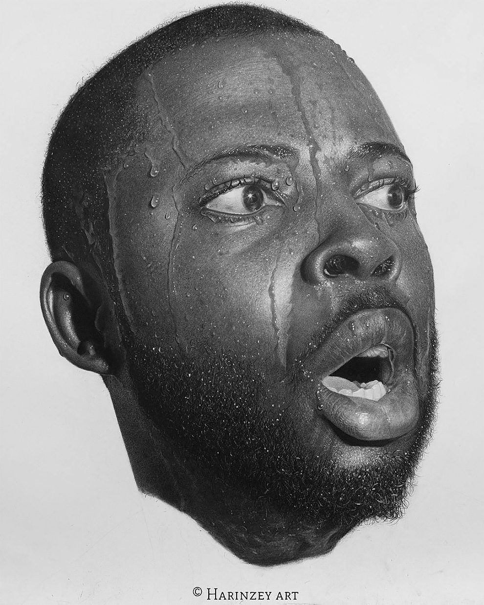 Expressive large scale pencil drawings that are amazingly photo realistic