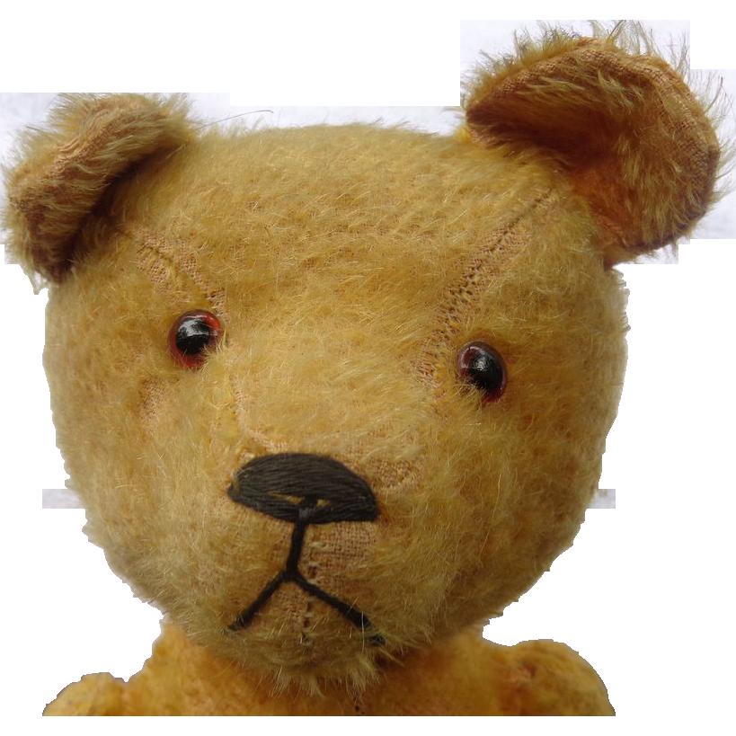 C 1915 Humpback Swivel Head Teddy Bear With Unusual Expression Teddy Bear Teddy Teddy Bear Plush