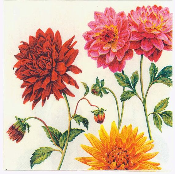 Garden Zinnias Decoupage Craft 4x Paper Napkins for Party